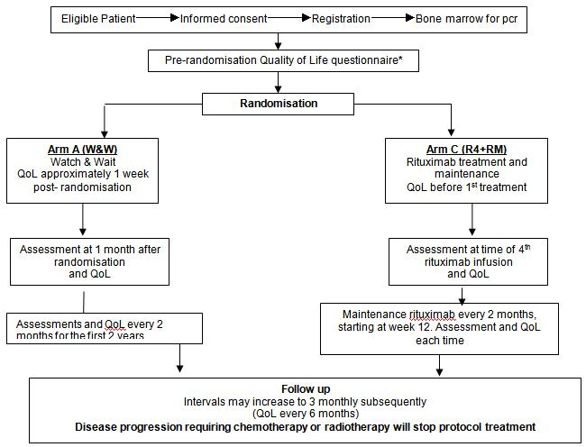 An intergroup randomised trial of rituximab versus a watch and wait strategy in patients with advanced stage, asymptomatic, non-bulky follicular lymphoma